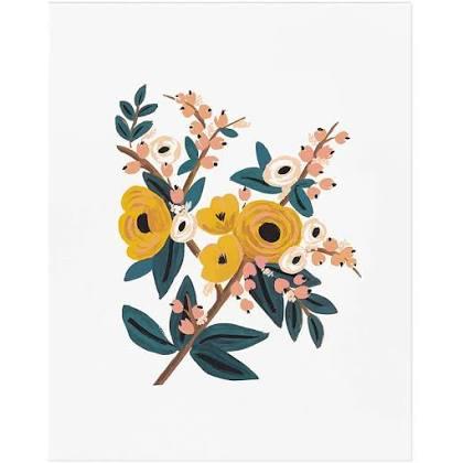 Marigold Botanical Art Print